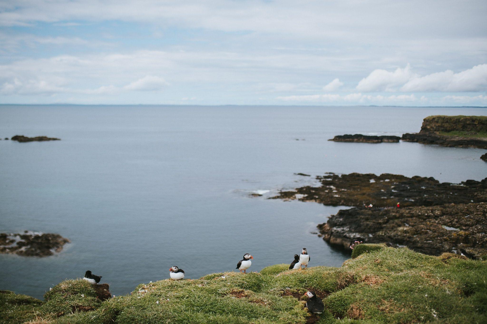 Lunga isle of mull