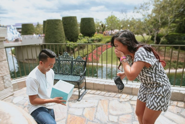 Disney World Proposal – Walt Disney World – Orlando, Florida