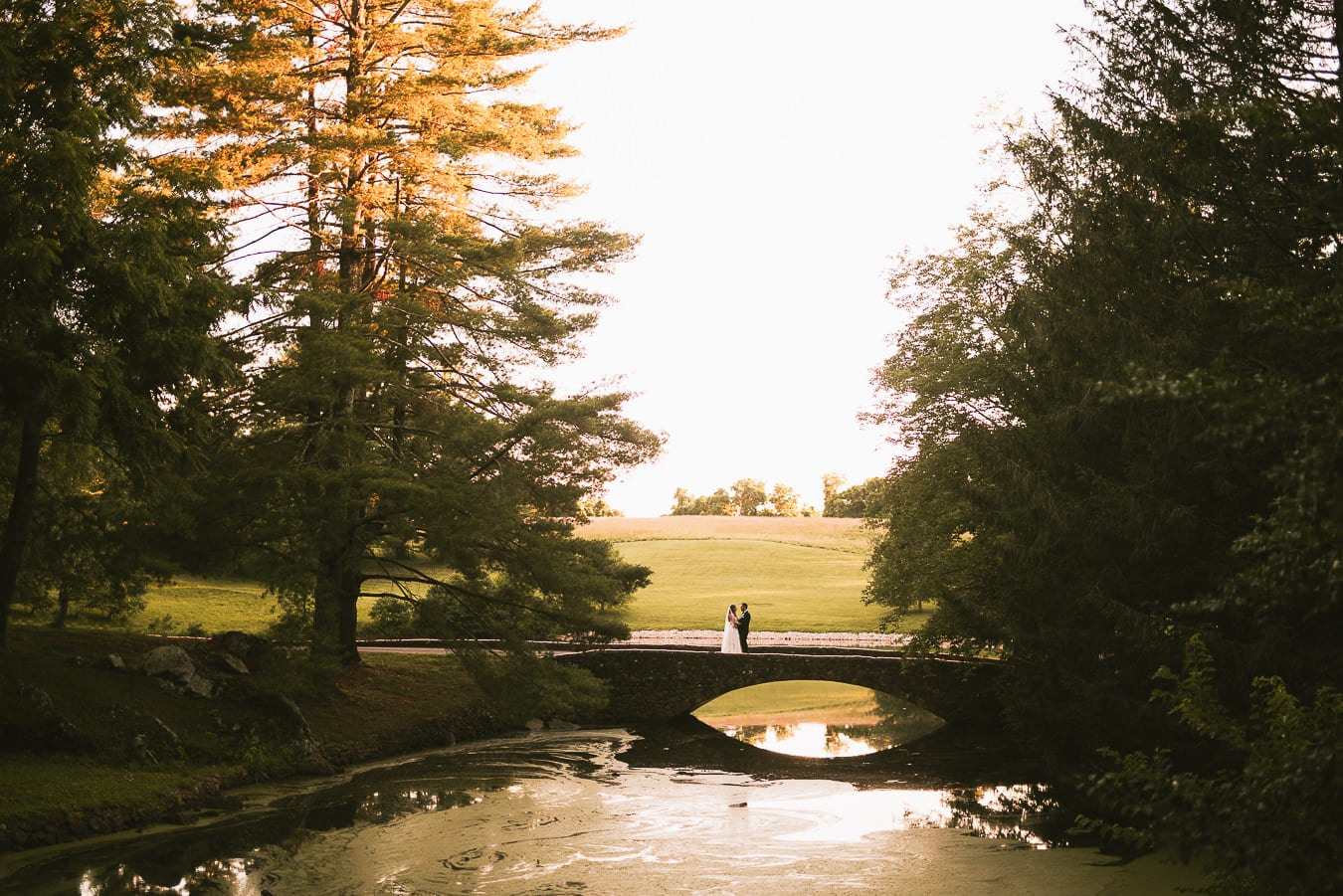 Wedding Venues in Virginia